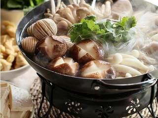 杂菌荟火锅