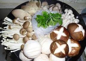 杂菌荟火锅,放入各种菌菇,放入粉丝和香菜即可