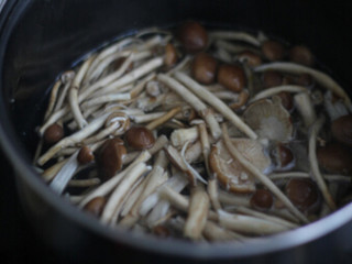 干锅茶树菇,茶树菇用淡盐水浸泡15分钟后,掰成小段,锅内烧开水,放入茶树菇,水再开时捞出