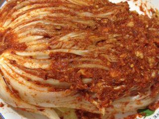 辣白菜,如图把调好的料抹到每一片白菜叶里,都要细细抹到