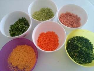 彩色饺子,各种配菜切成细末,加很少许盐混合备用。 我准备了蛋黄,不过后来没用上。