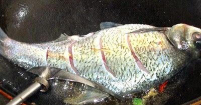 红烧鳊鱼,剩下的油用来煎鱼吧!油温6分就可以了