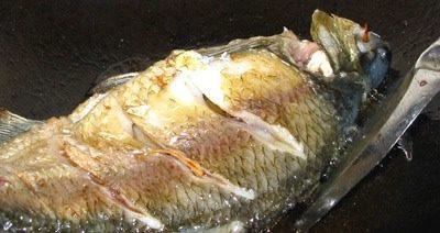 红烧鳊鱼,两面微黄就可以了,也可以稍微煎老点!!翻鱼的时候小心,弄断了就砸锅了