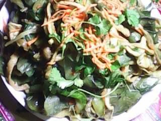 群英荟萃,5将油开放调料葱把菜放锅里加盐老抽翻炒一会即可出锅出锅以后放点香菜和萝卜丝即可