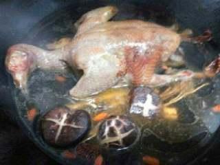 鸽子汤,放入香菇和水煲开,放点盐胡椒粉