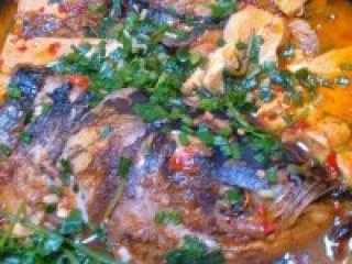 自制【鱼头豆腐火锅】,慢炖入味的鱼头豆腐,撒上蒜苗,香菜即可。