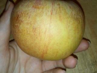 苹果小米粥,苹果一个备用