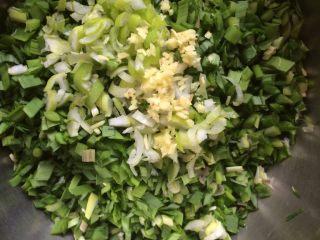 韭菜鸡蛋蒸饺,如图清洗干净沥水后的韭菜,大葱,生姜切碎