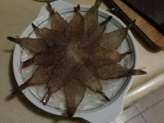 """【芙蓉虾】-蒸""""的鲜美! , 粉丝摆在摆底,再摆放上虾,摆一个自己觉得满意的造型就可以了。"""