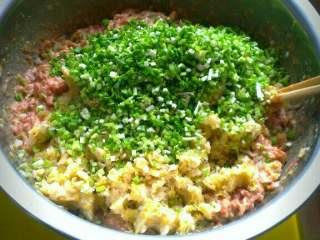 猪肉酸菜饺子,倒入酸菜 蒜苗碎;