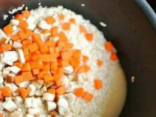 排骨焖饭,东北大米和圆糯米放在一起淘洗干净后,放入香菇丁儿和胡萝卜丁儿。