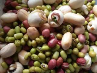 蜜枣什锦粽子,把红豆,绿豆,花生,莲子洗净用清水浸泡5小时左右,(最好头天晚上泡)沥干水分备用。
