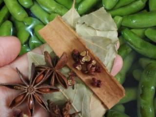 凉拌毛豆,锅烧开水倒入毛豆,加桂皮,香叶,花椒,八角,适量盐,煮10到15 分钟。